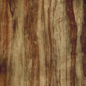 Chapa Etimoe Tiger Wood Chapas Arias